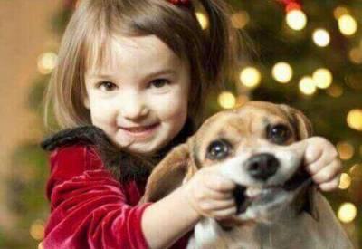 дети верят животным